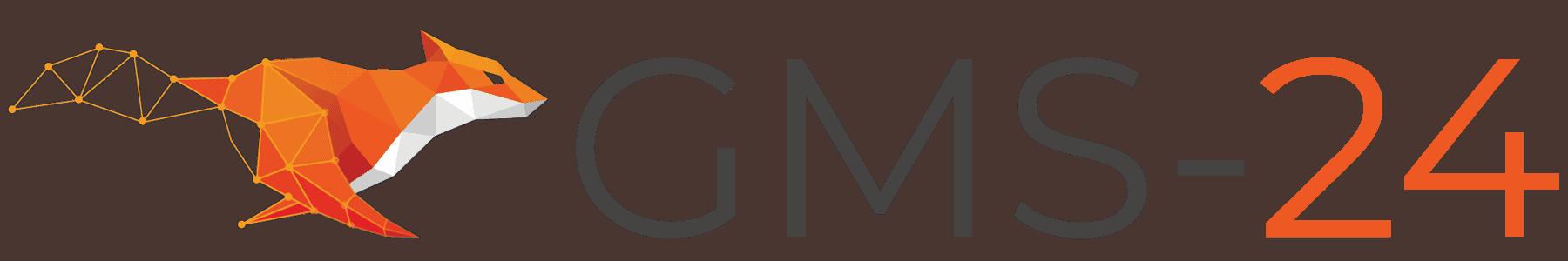 GMS 24 Rapid Tooling & Prototypen-Spritzguss